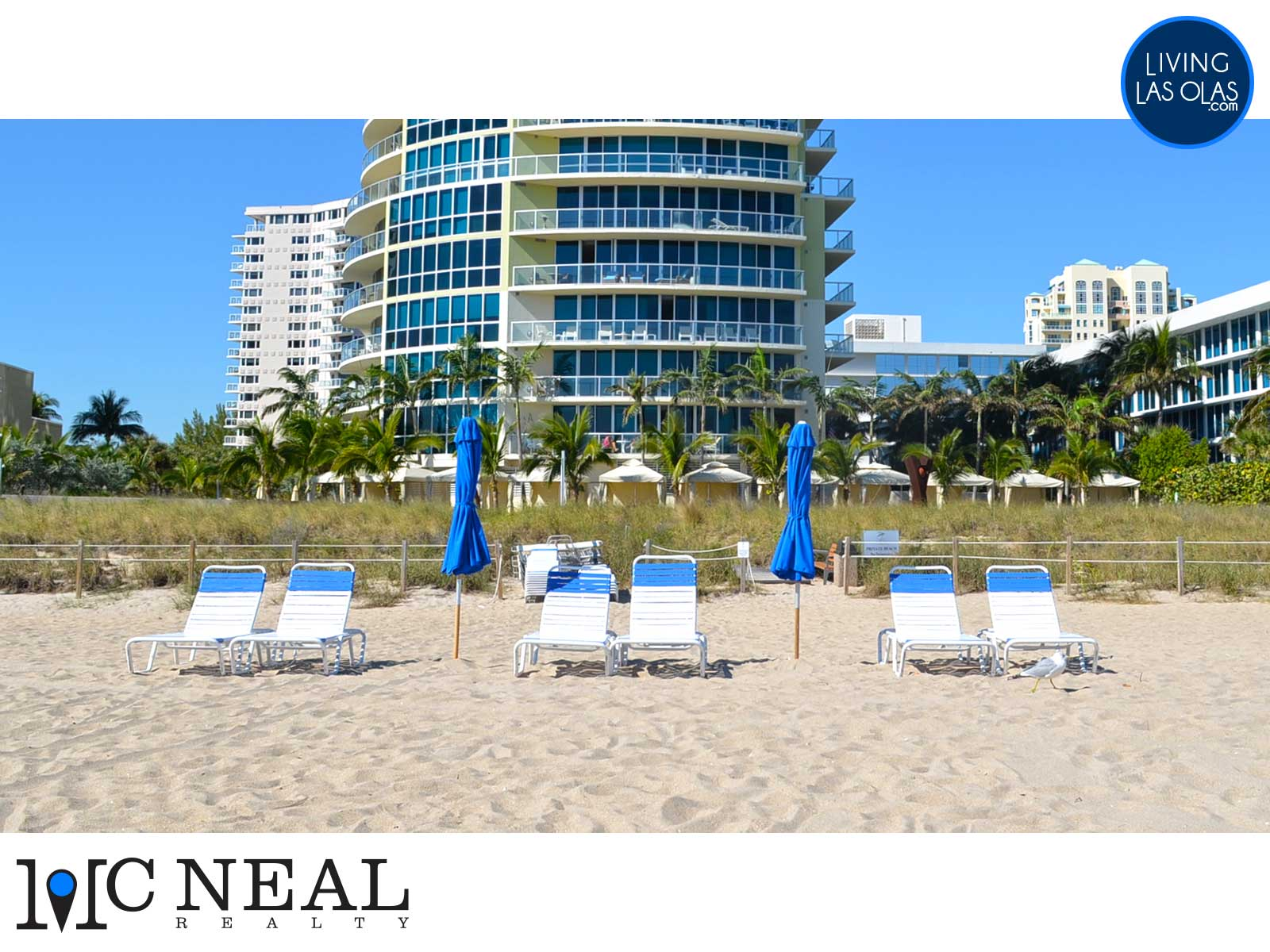 Coconut Grove Residences Fort Lauderdale Condos Images 02